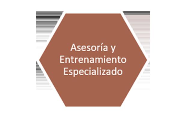 1 slide asesoria