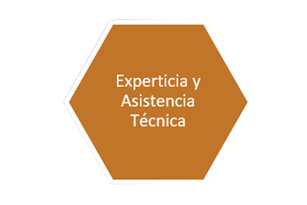 3 slide experticia