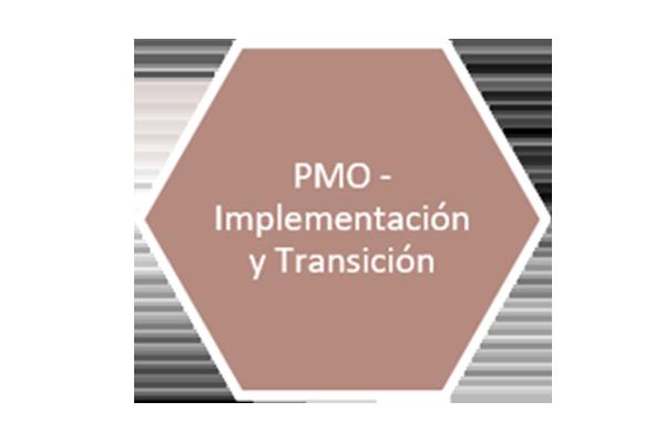 5 slide pmo